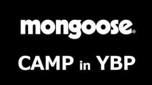 mongoose_01